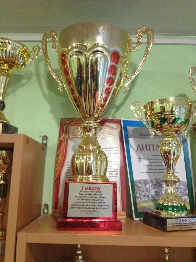 Второй этап турнира по шахматам на кубок РООИЗ «ТИФЛОПУТЬ» в 2018 году